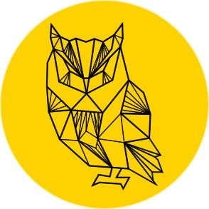 Nowoczesne Strony Internetowe, Skuteczne Pozycjonowanie - Agencja Internetowa OWLSTUDIO.pl | Kielce | Kraków